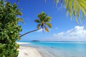 cookeilanden_palmboom_op_het_strand